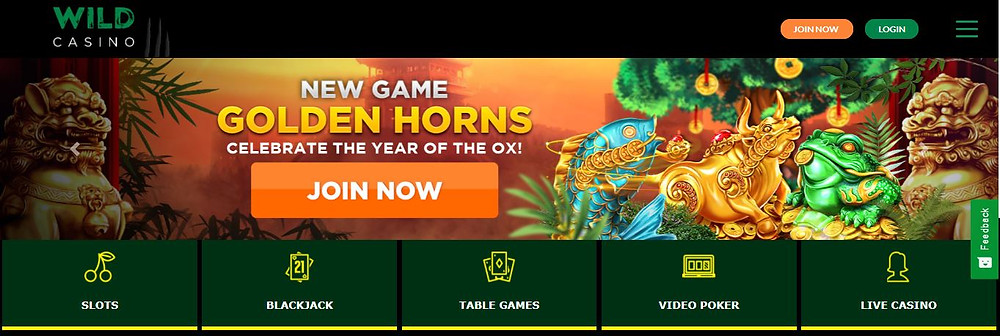 wild casino, wild casino review, crypto casino, crypto gambling, crypto slot, online slots, online slot, online jackpot, the golden horns