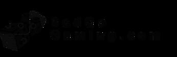 BadCoGaming.com Logo