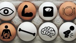 A Dozen Ways Egg Nutrients Benefit the Body
