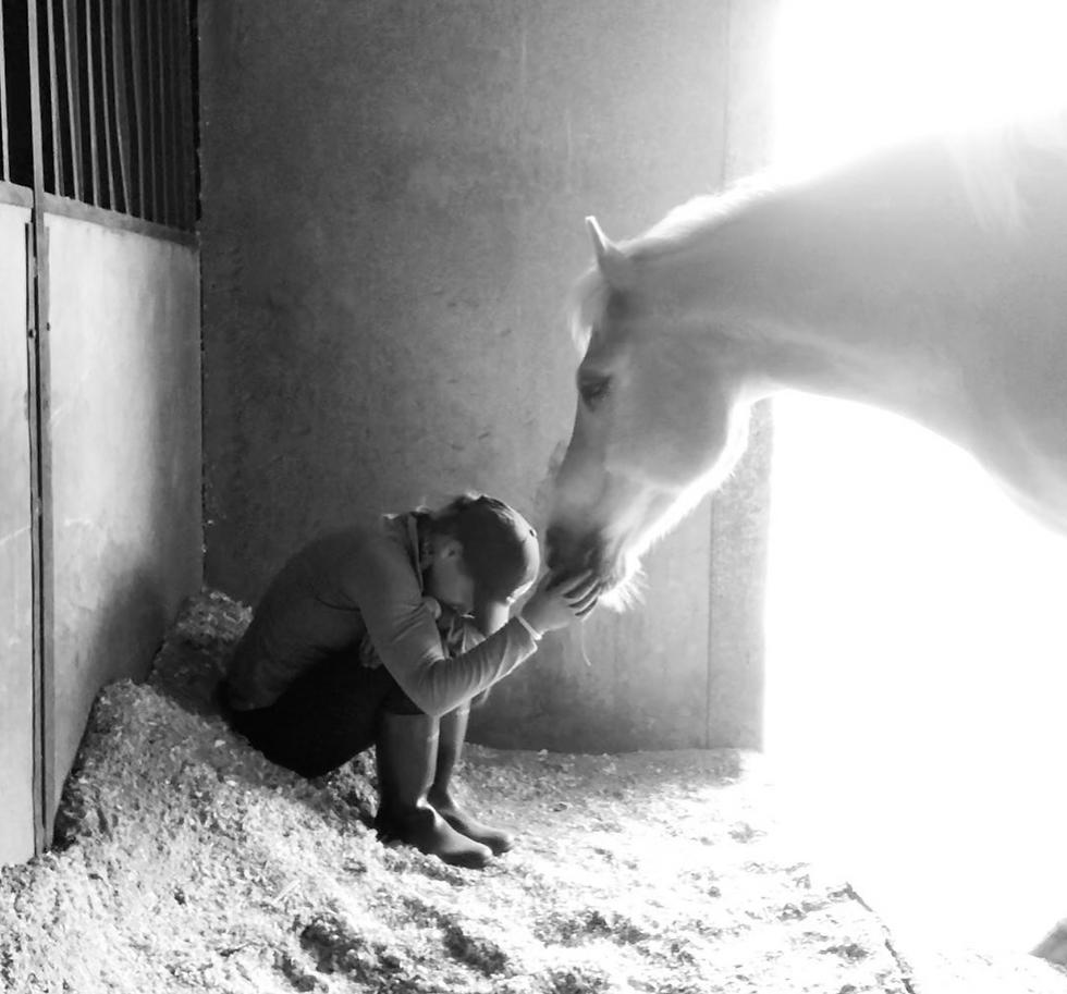 Medicine Horse therapy team
