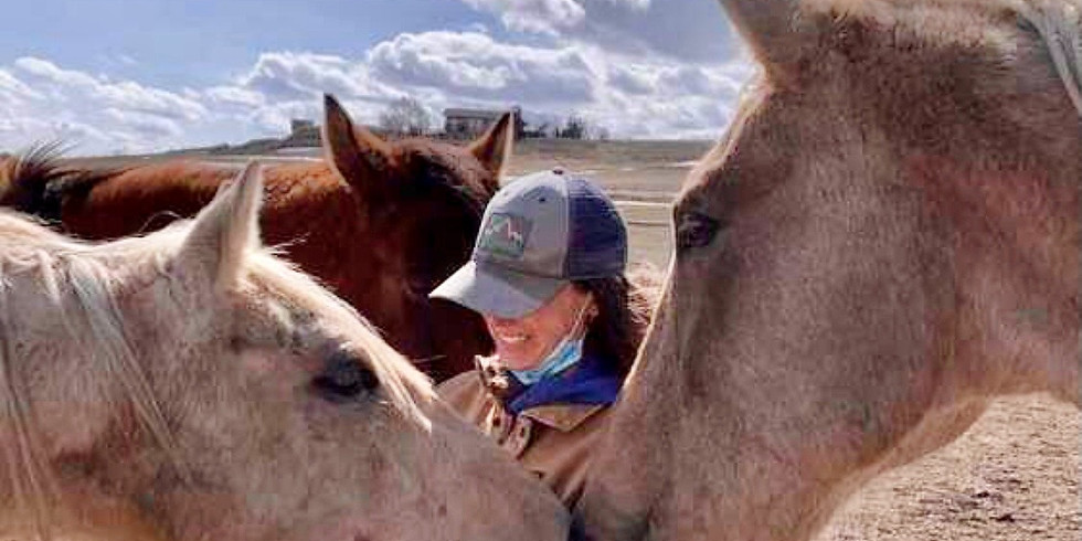 Wholeness with Horses