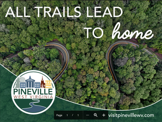 Pineville Poster