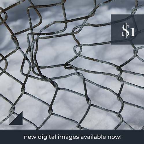 Digital Web Graphic | Chain Link Fence on Snow | Photography