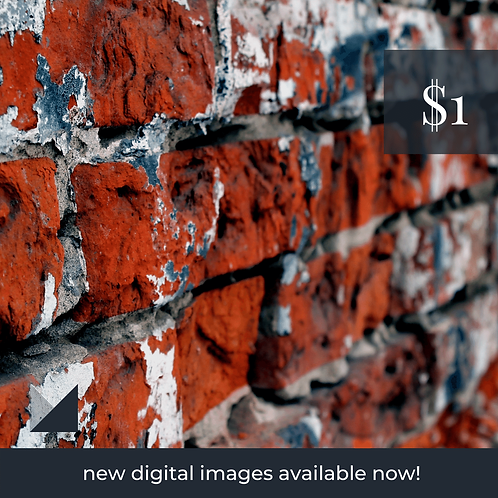 Digital Web Graphic | Red Brick Wall | Photography