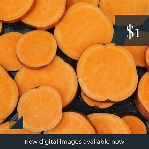 Digital Web Graphic   Sweet Potato (Orange)   Photography