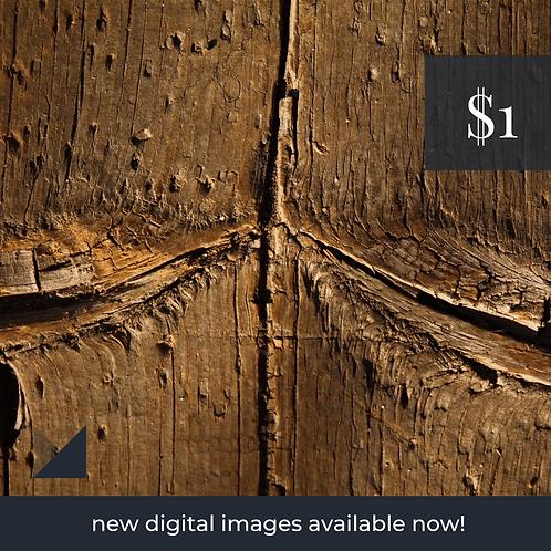 Digital Web Graphic   Wood Grain Pattern   Photography