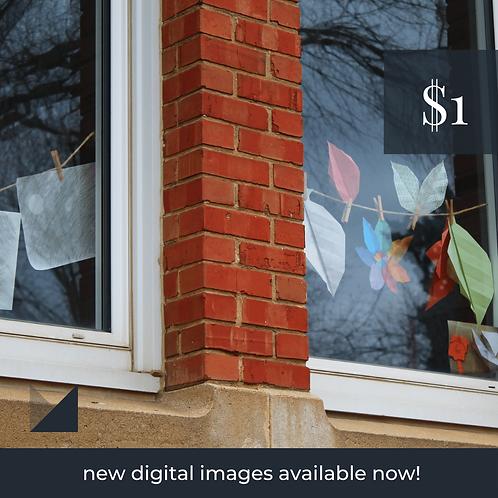 Digital Web Graphic | Window Reflection + Kids Crafts | Photography