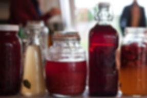 Kombucha ferment