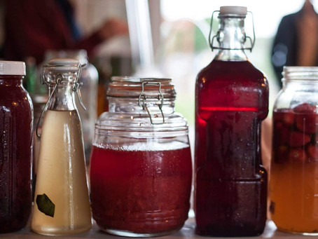 Kombucha Basics- Our first full length online course is here!