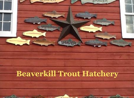 Where Fishing Begins -- Beaverkill Trout Hatchery
