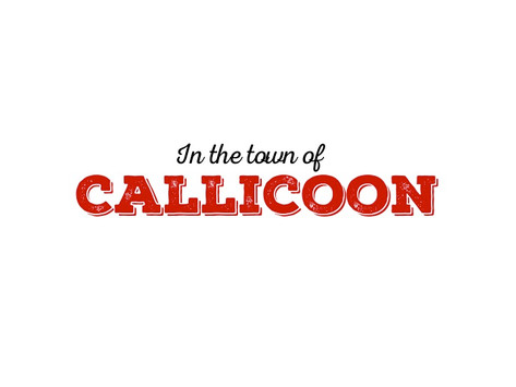 The Town of Callicoon, NY