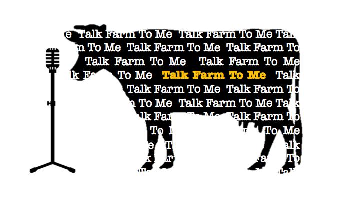 Talk Farm to Me   New Project