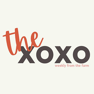 the xoxo logo-2.png