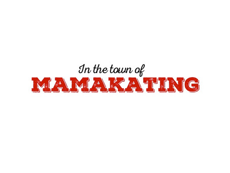 The Town of Mamakating