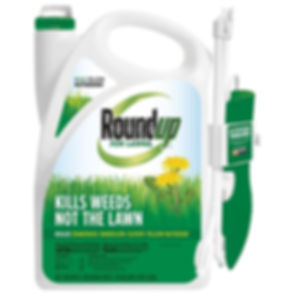 roundup-lawn-weed-killer-438501005-64_10