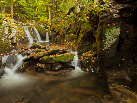 Give a Green Future with Support for Catskill Mountainkeeper