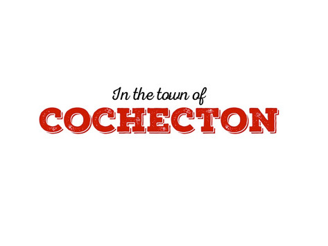 The Town of Cochecton, NY