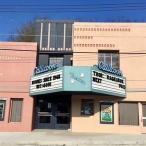 Callicoon Theater