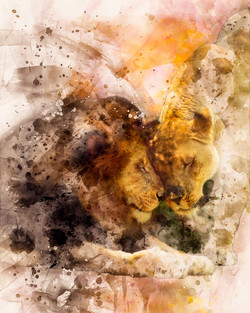 Lion Cuddle Watercolor-2-3
