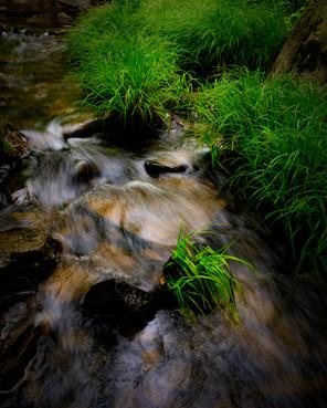 Rakes Mill Pond_0334.jpg