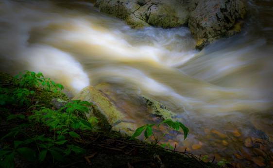 Flow_DSC6876.jpg