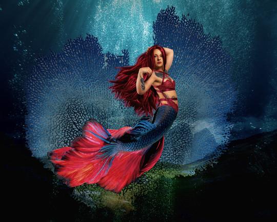 Mermaid_3121.jpg