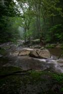 Bottom Creek Journey_DSC6882