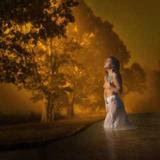 Wading Dawn II.jpg