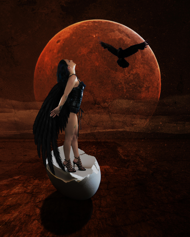 RavenFlight