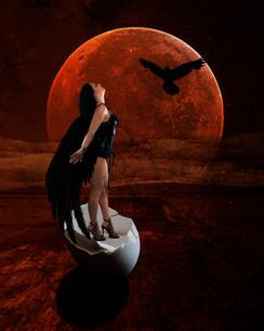 RavenFlight.jpg