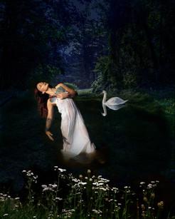 Swan Dance.jpg