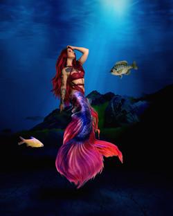 Mermaid_3135