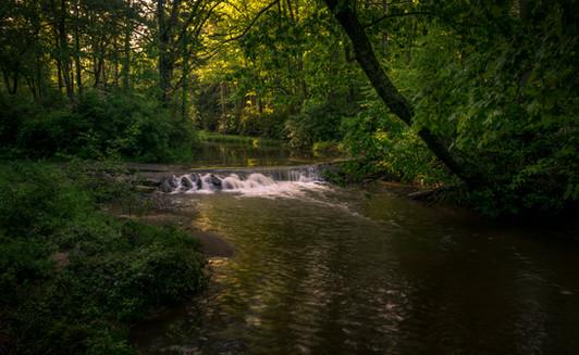 Bottom Creek_DSC6787