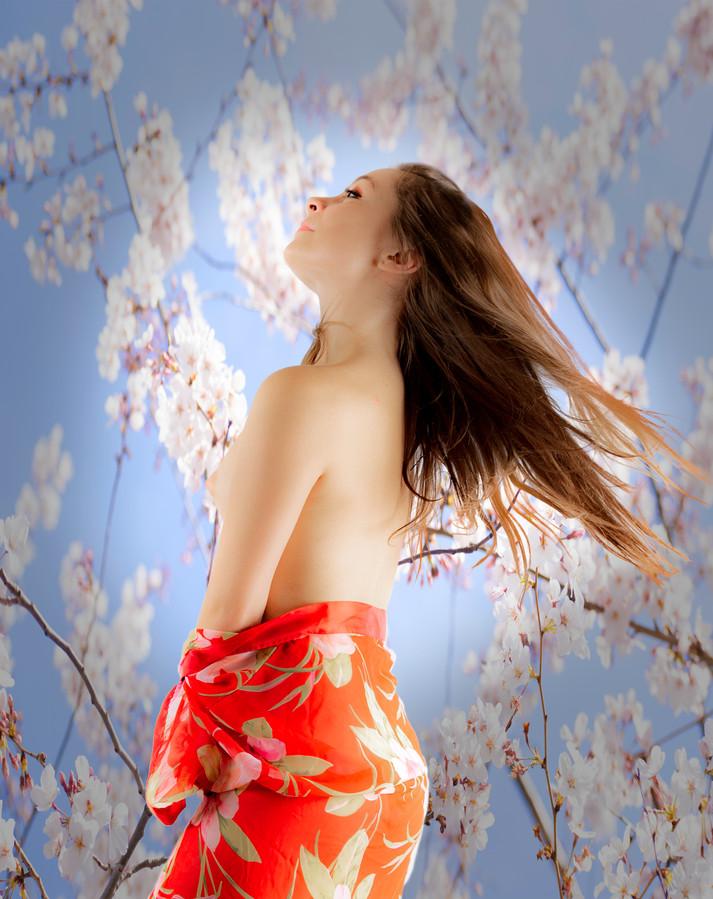 kimono_2797b.jpg