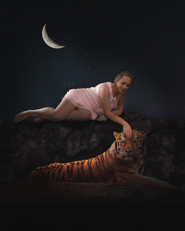 TigerPurr