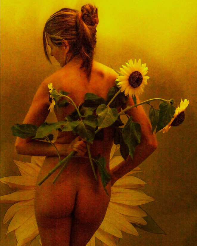 Sunflower_2853.jpg