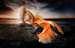 Mermaid_5895b