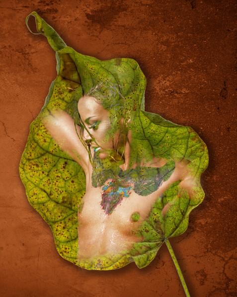 Leaf Nude_0104.jpg