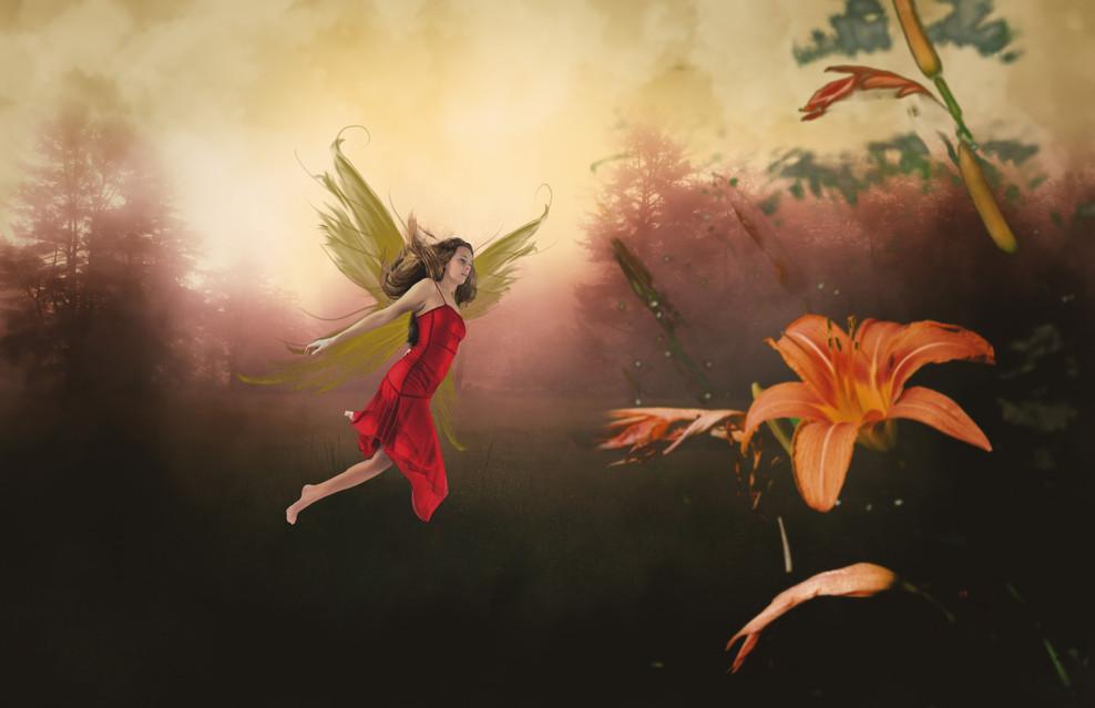 Fairy_3374.jpg