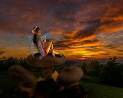 Fairy - Mushroom-1