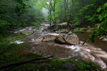 Bottom Creek Journey_DSC6883