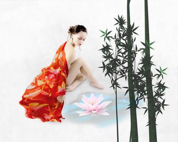 Kimono_lotus_2754c.jpg