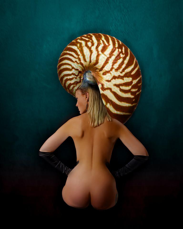 lexi-seashell_2215.jpg