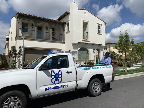 eco-friendly-pest-control-service-technician-servicing-a-home-for-ants