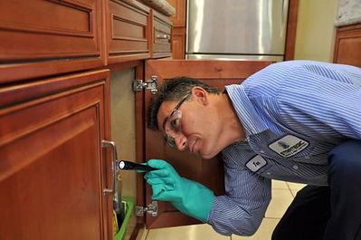 inspecting-for-termite-infestation