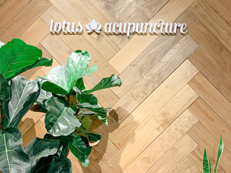 Learn All About Lotus Acupuncture In Charlotte, NC