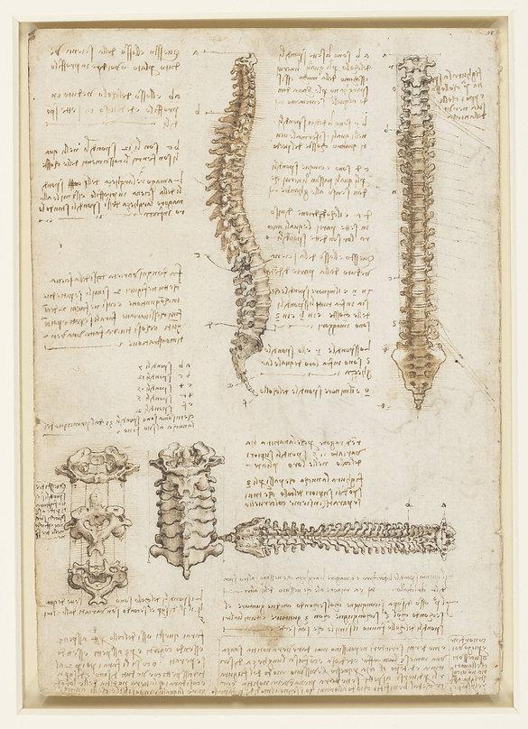 DaVinci 1 spine.jpg