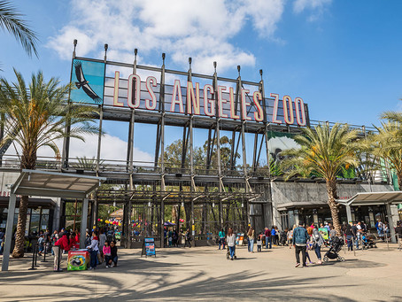 Fun Things To Do In Los Angeles, CA