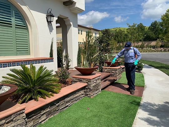 residential-eco-friendly-pest-control-service-technician-with-strategic