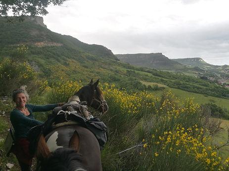 A pied avec les chevaux